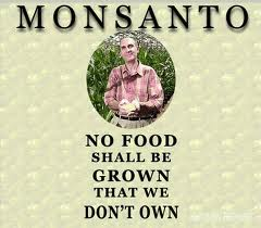 Monsanto Food  Is Ours To Own